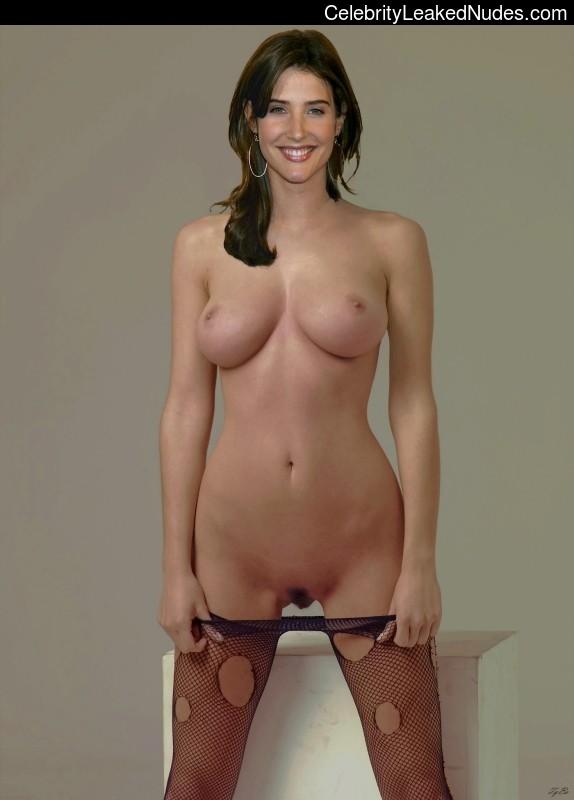 Cobie Smulders fake nude celebs