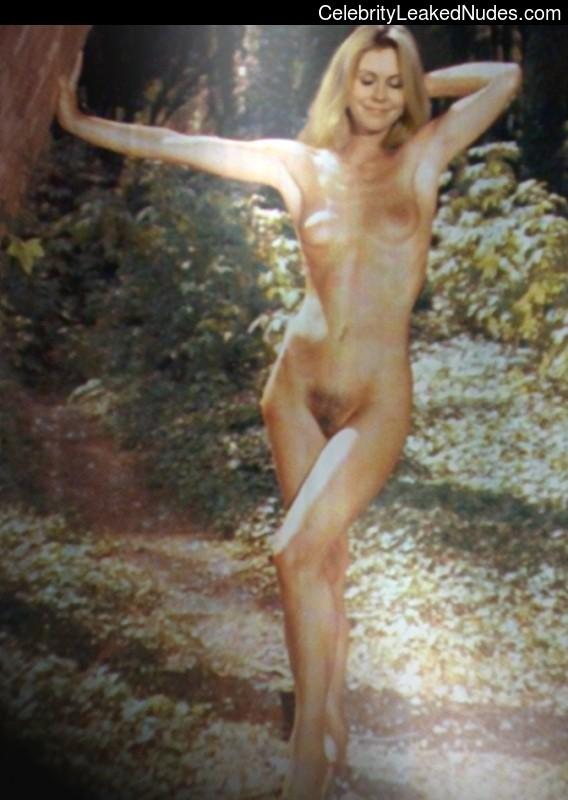 Elizabeth Montgomery celebrities nude
